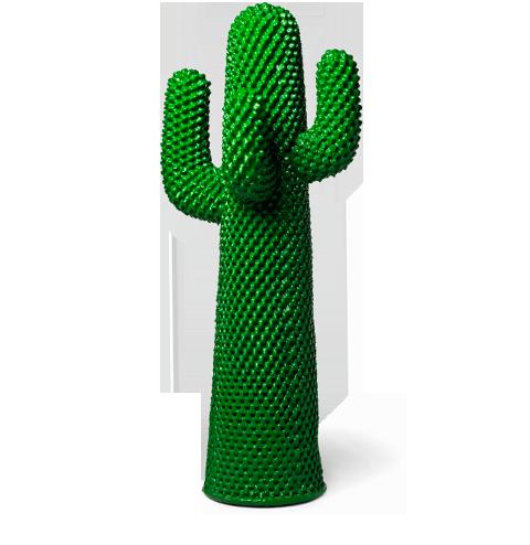 cactus-verde